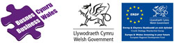 Business Wales Mentor logo